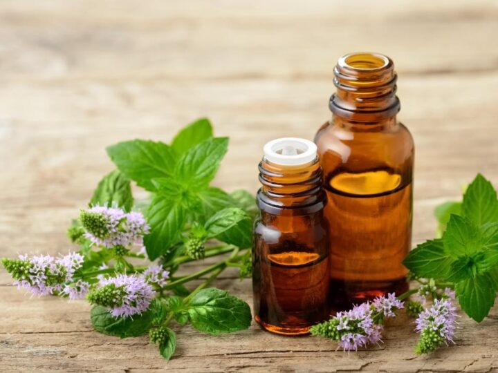 Precise Study On The Best Essential Oil Brands