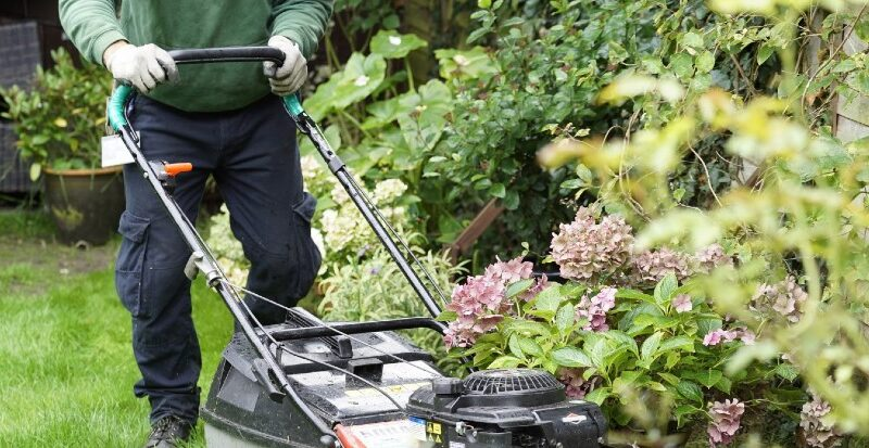 Garden Maintenance Services – What Every User Should Think About
